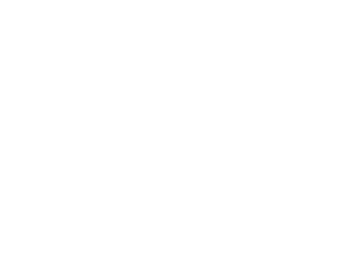 INSTITUTO MEXICANO DE CINEMATOGRAFÍA (IMCINE)